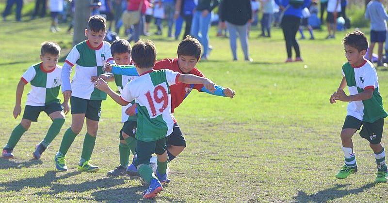 Campeonato de baby fútbol