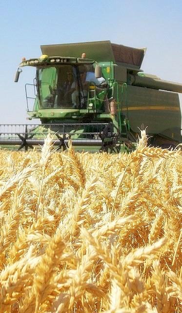 Maquinaria agrícola barata